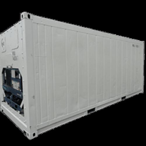 container frigorifique occasion