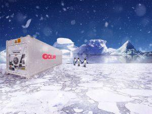 Container Frigorifique: La solution pour bien préserver votre marchandise